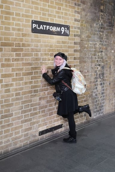 Harry Potter Platform 9 3/4